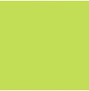 LEE - Rouleau de gélatine - couleur Lime Green 088 - Dim. 7,62m x 1,22m (Neuf)
