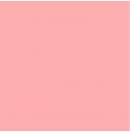 LEE - Rouleau de gélatine - couleur Light Salman 109 - Dim. 7,62m x 1,22m (Neuf)