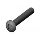 MARTIN - Vis M4x30 bh torx - Noir pour lyre MARTIN (Neuf)